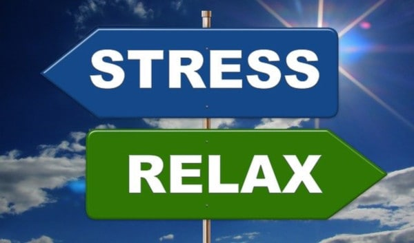 regulate your stress levels
